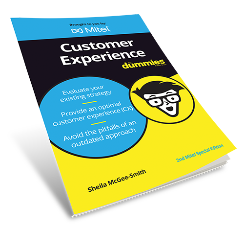 Customer Experience For Dummies Book